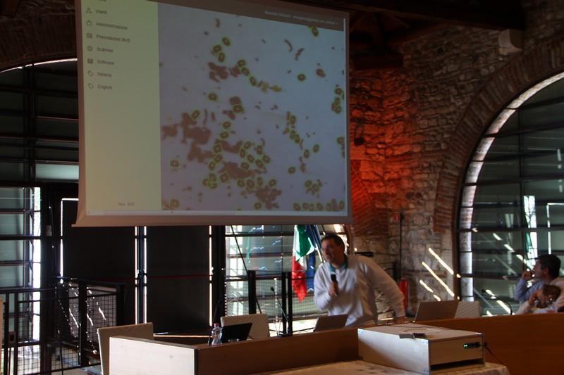 IMG_presentazione a Lazise
